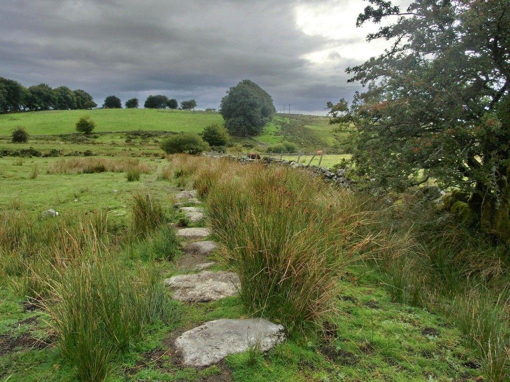 dartmoor-200587_1280