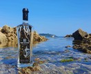 Tan Dowr Cornish Vodka additional 1