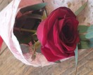 A single red rose & eucalyptus additional 1
